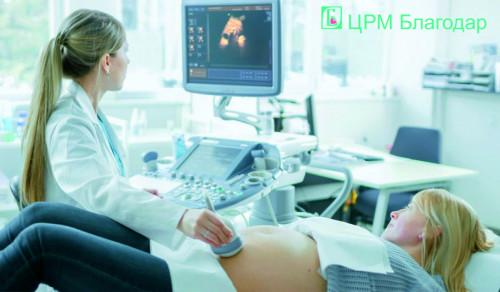 Завмерла вагітність після ЕКЗ фото